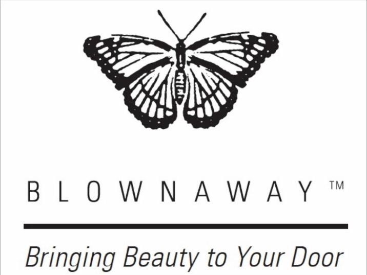 Blownawayicon